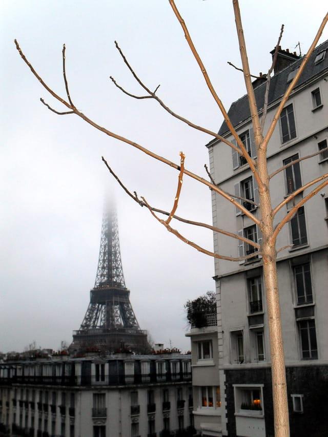 Paris Janvier 2010