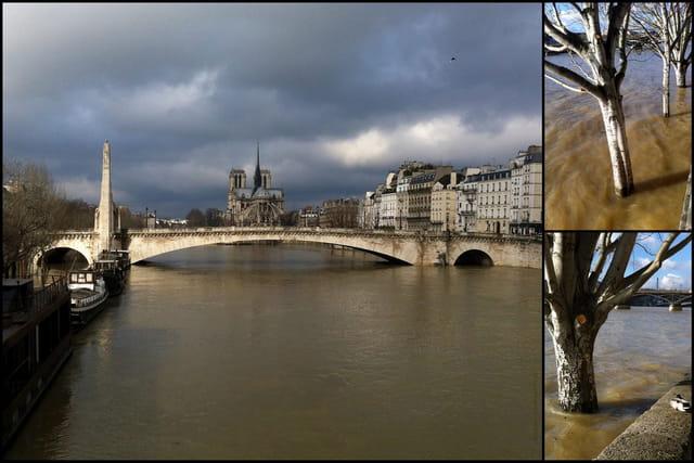 Paris La Seine en crue Le 8 02 2013