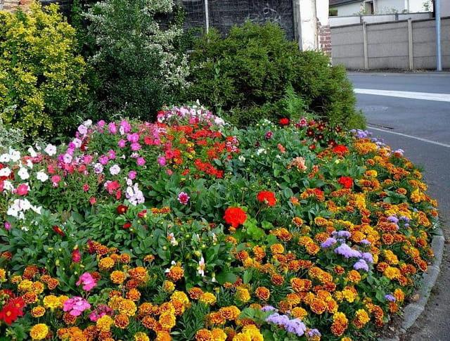 Parterre de fleurs au coin d'une rue à Gravigny