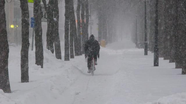 Pas peur de l'hiver