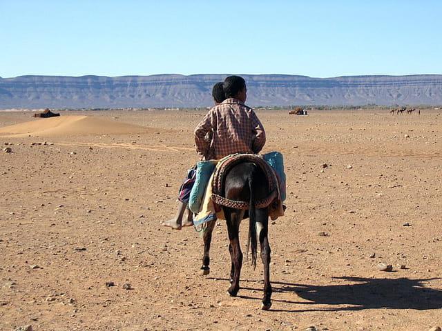 Pas privés de désert