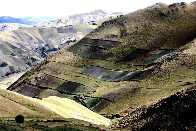 Patchwork de champs dans les montagnes Equatoriennes