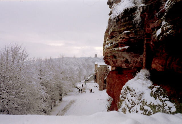 Paysage d'Alsace2