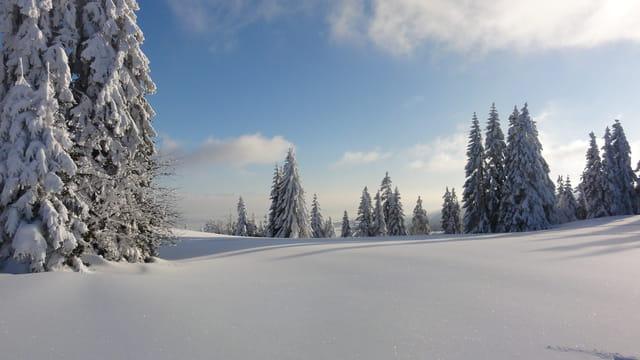 paysage d 39 hiver par marlene angelot sur l 39 internaute. Black Bedroom Furniture Sets. Home Design Ideas