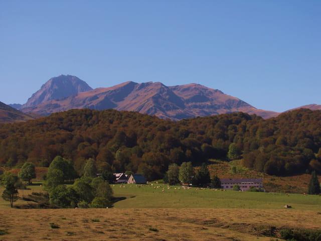 Paysage de montagne en automne.