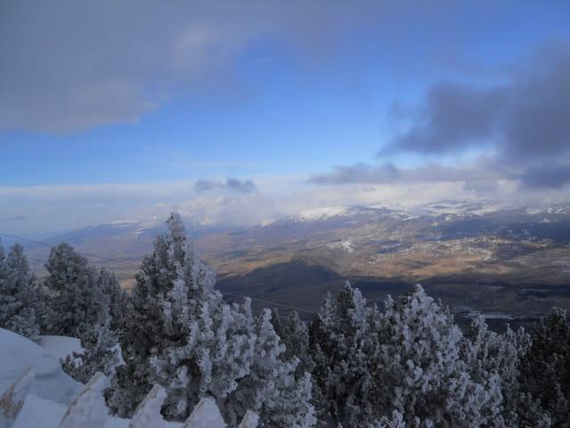 Paysage eyne: février 2011