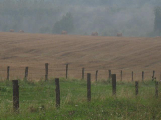 paysage lorrain
