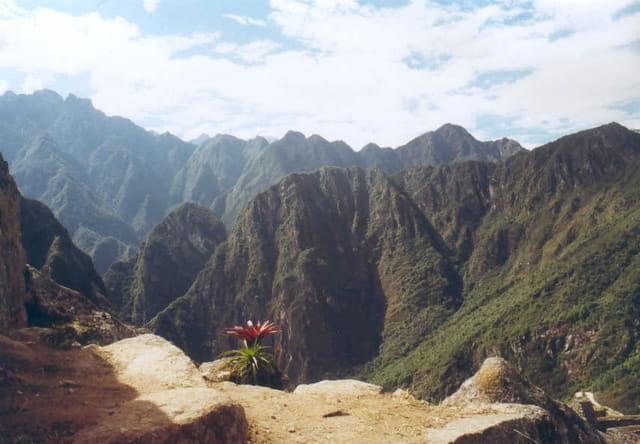 Paysage sur le Macchu Pichu