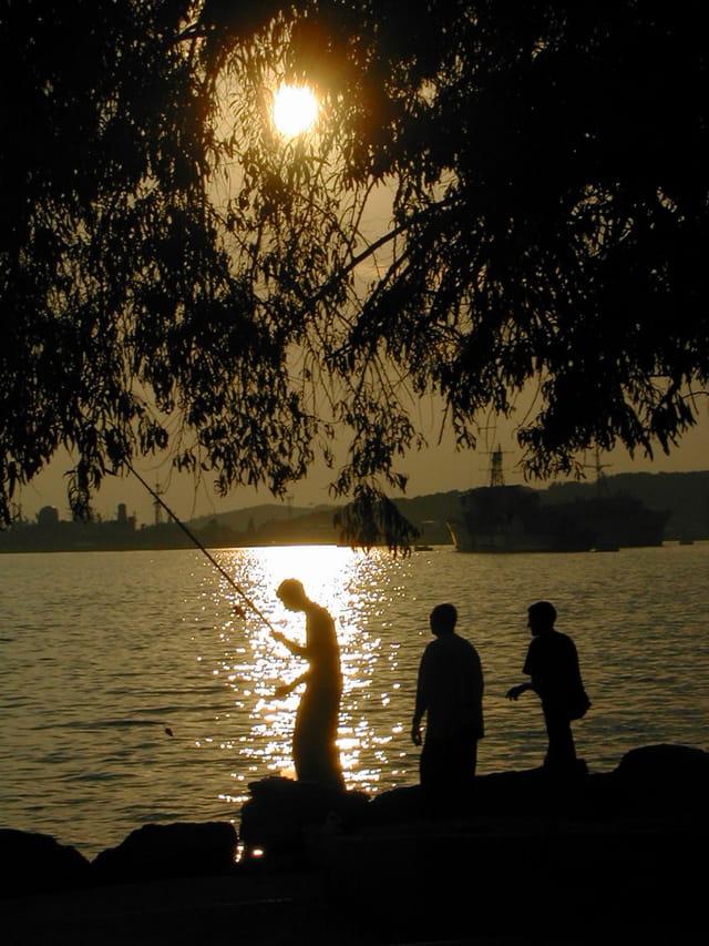 Pêche au soleil couchant