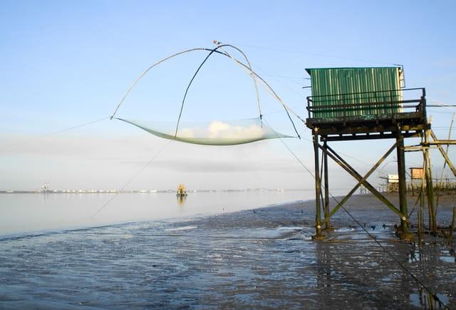 Pêche en loire