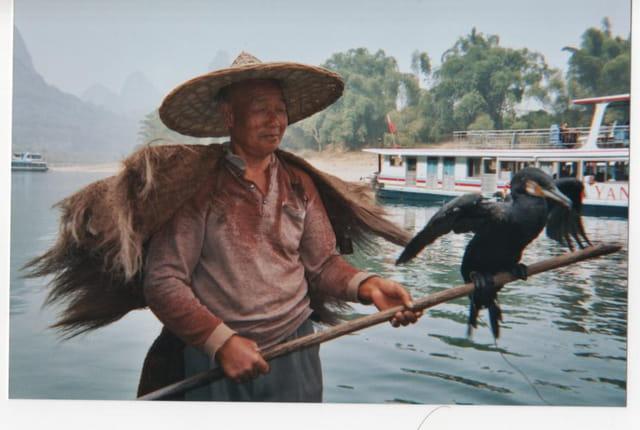 pécheur au cormoran