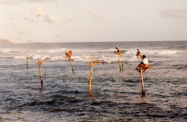 Pêcheurs sur échasses