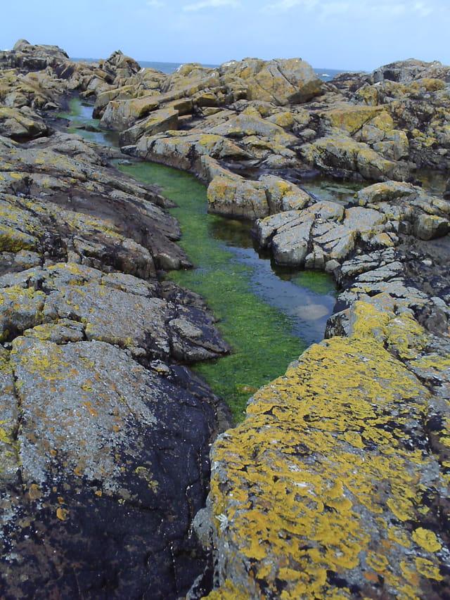 Peinture sur roches Bretonne