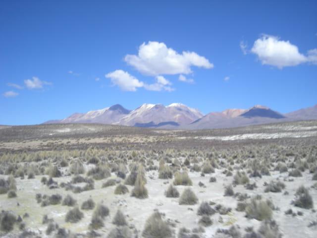 Pérou Août 2011 Entre Arequipa et Puno