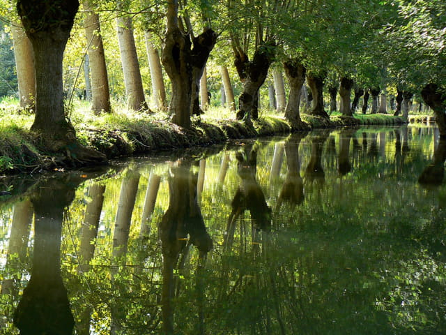 Perspectives en Marais Poitevin