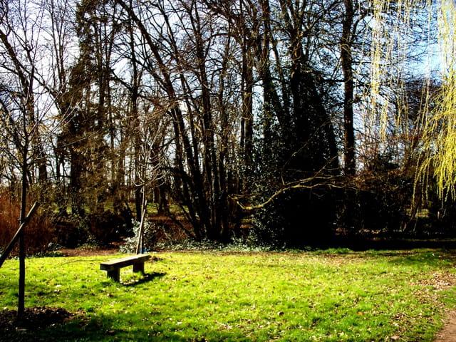 Petit banc dans Parc en pleine lumière !