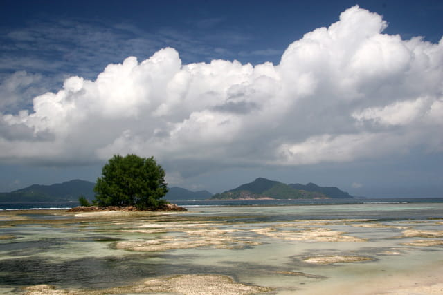Petit îlot sur le lagon