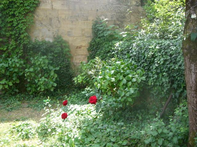 Petit Jardin En Ville Par Mich Le De Puyraimond Sur L