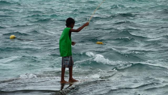 Petit pêcheur mauricien