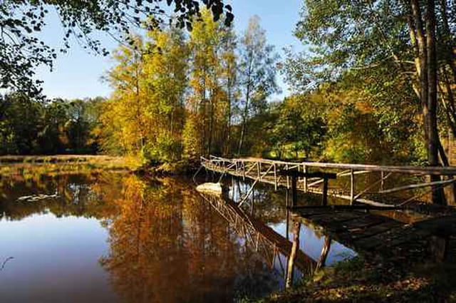 Petit pont sur l'étang