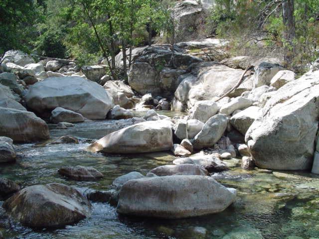 Petit ruisseau de montagne