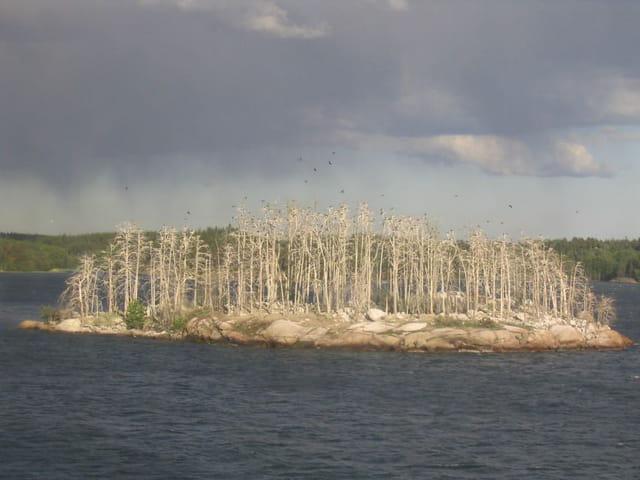 Petite île entre Suède et Finlande