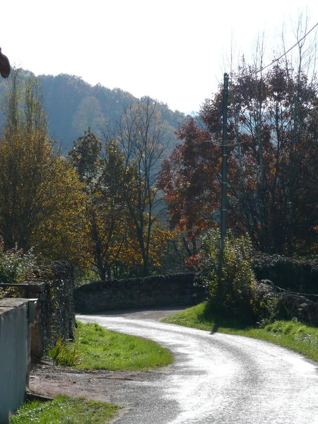 Petite route de campagne à l'automne