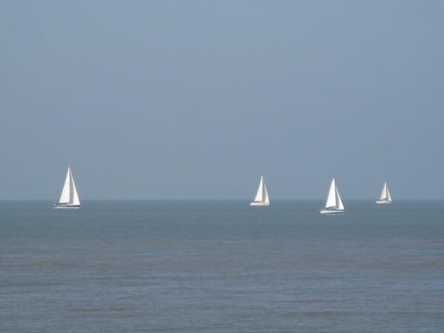 Petits bateaux d'octobre belge