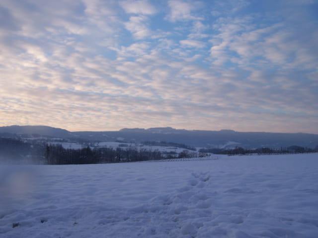 Photo hivernale
