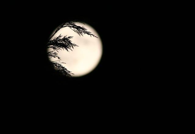 Piège à lune
