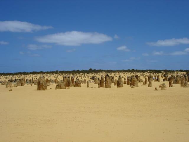 Pinnacle désert