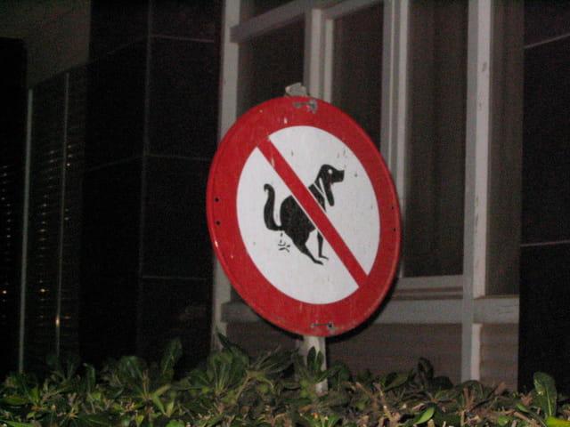 Pipi interdit