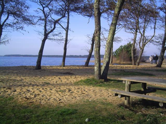 Pique nique au bord du lac