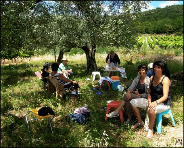 Pique-nique et papote sous les oliviers