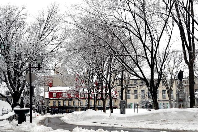 Place d'Armes sous la neige