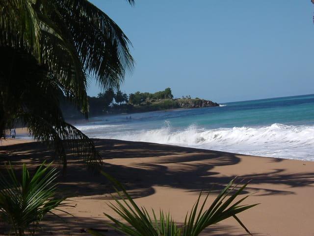 Plage de Grand Anse Guadeloupe