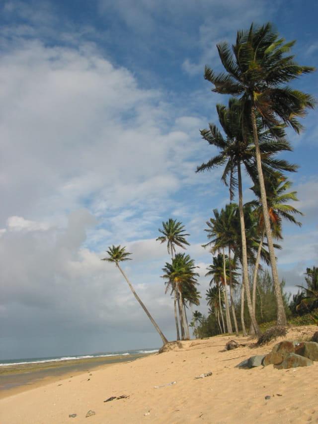 Plage de San Juan