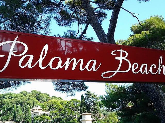 Plage Paloma Beach (1)