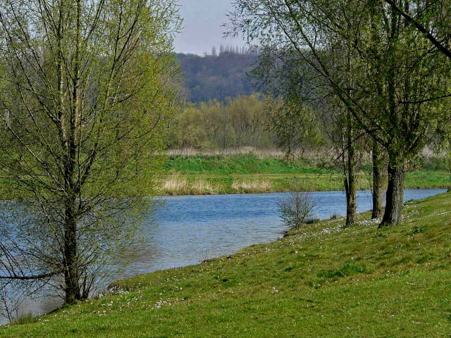 Plan d'eau, parc de Rouelles