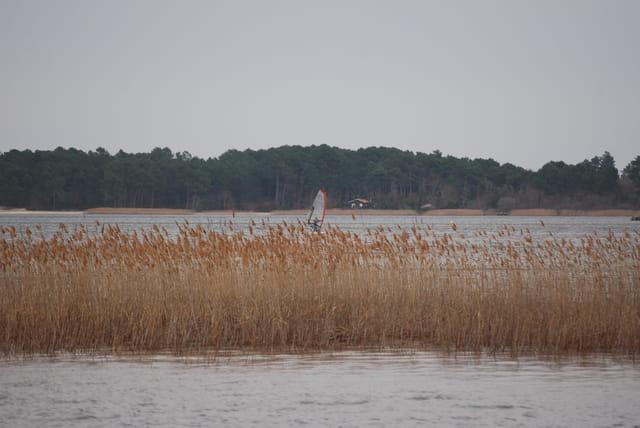 planche à voile sur le lac un dimanche d'hiver