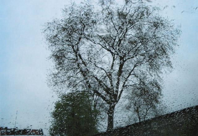 Pluie d'automne sur un pare-brise