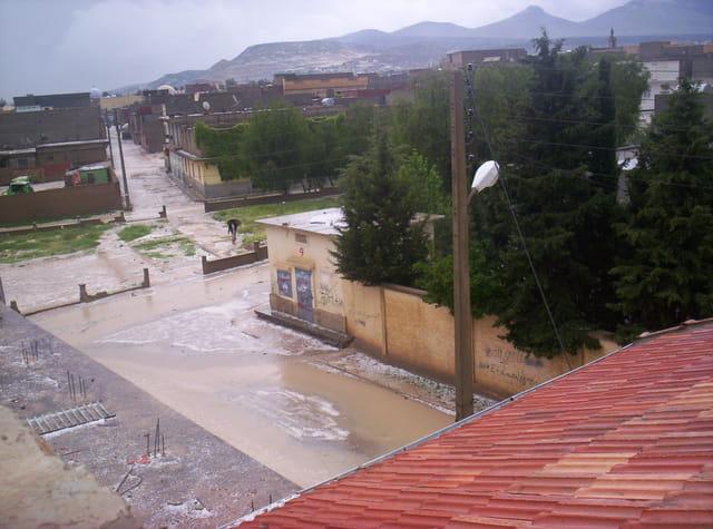 Pluie de mai