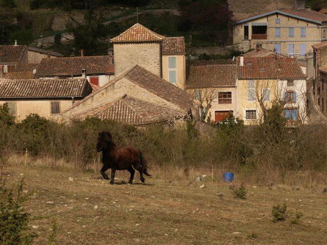 Ponette au village