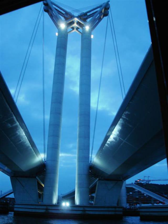 Pont Flaubert ouvre ses yeux dans la nuit bleue