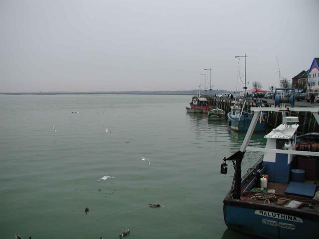 Port du crotoy en hiver