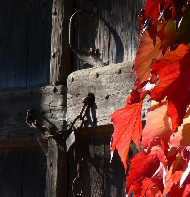Porte d'automne