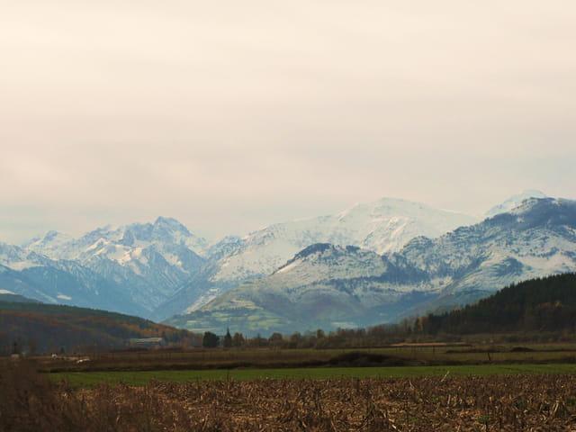 Pourtant... que la montagne est belle.