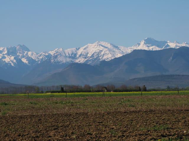 Pourtant.. que la montagne est belle.