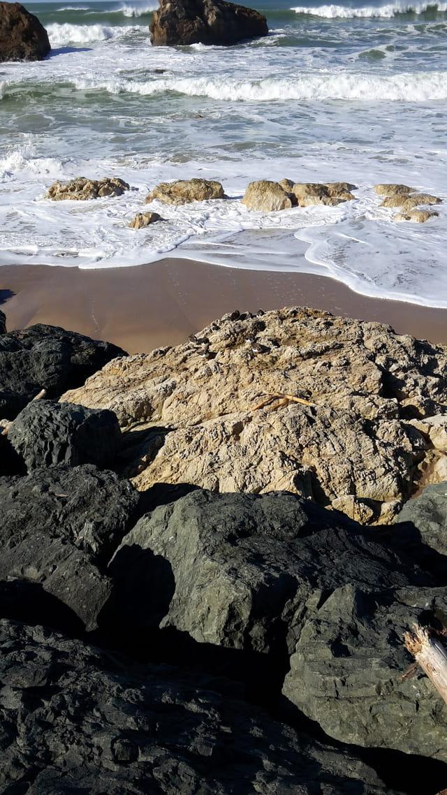 Promenade au bord de la plage