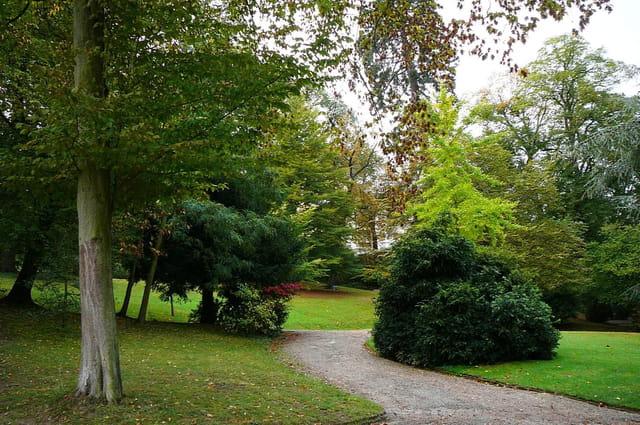 Promenade automnale au jardin botanique 2